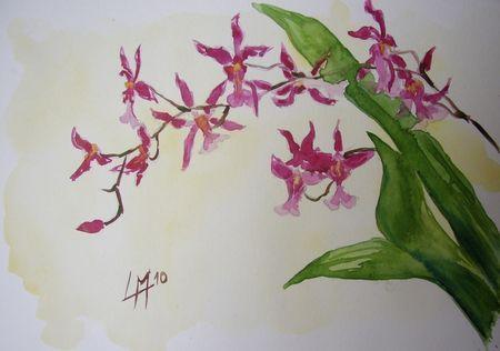 les 13 meilleures images propos de tatoo sur pinterest aquarelles fleurs d 39 orchid es et. Black Bedroom Furniture Sets. Home Design Ideas