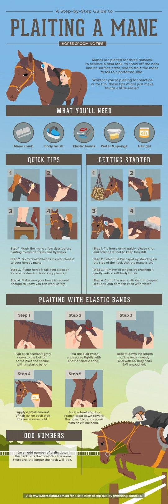 A Step-by-Step Guide to Plaiting a Mane