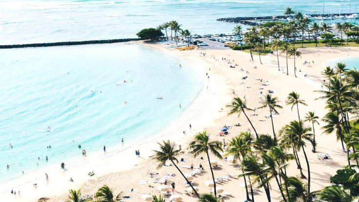 You Can Now Fly To Hawaii From Toronto For $485 Round Trip