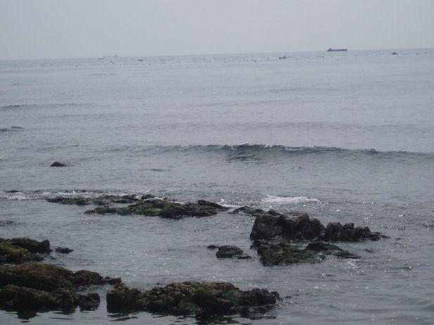 청사포 - 돌과 바위들로 아담한 해안선을 이루고 있는데...