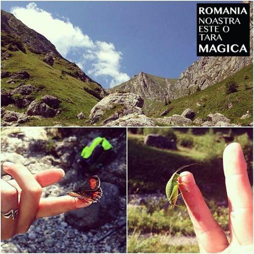Valea Morarului, Bucegi. Fotografia vine de la @bogdanc . Felicitări!