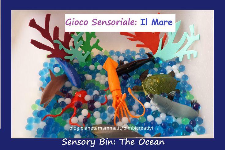 Gioco sensoriale: Il Mare - Sensory Bin with Water Beads: The Ocean