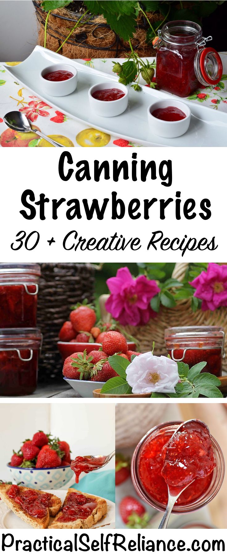 30+ Ways to Can Strawberries - Creative Canning Recipes