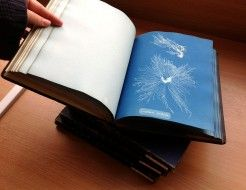 The first book published with 'photographs' was Anna Atkins' volumes of British Algae #Cyanotype