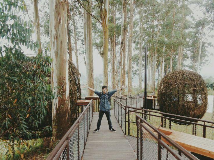 helloooo!!!! dusun bambu....