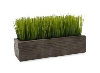 Grow Your Own Wheatgrass in 9 days.  Now I like to juice wheatgrass so I dont know if this should be catorized as Healthy Food or Crafts!  At any rate, Im going to try this! crafty-diy