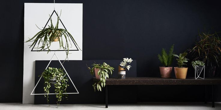 Pop your plants in glorious eco resin pots and vases from Capra Designs