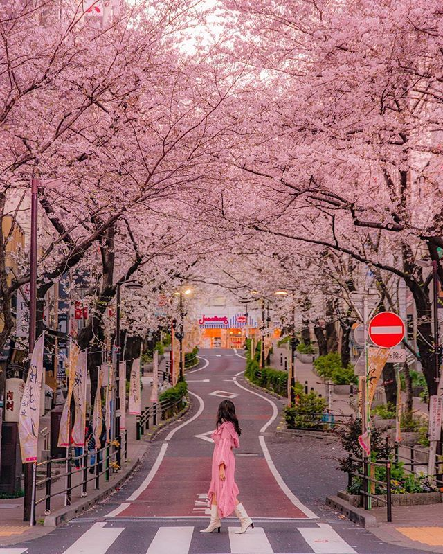 Shere Your Photos Of Japan Lovers Nippon Instagram Photos And Videos Japan Cool Places To Visit Shibuya