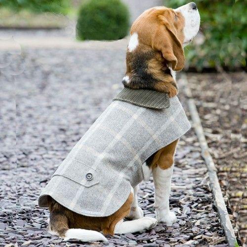 Mutts & Hounds Slate Tweed Dog Coat - £10 off!