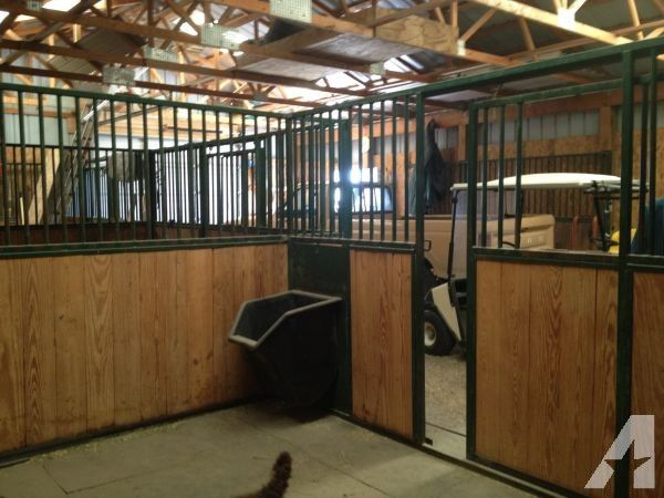 182 Best Images About Horse Barn Hay Grain Feeders On