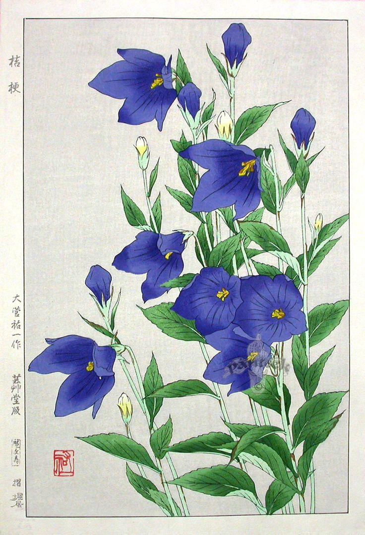 Коллекция картинок: Konan Shin Hanga Woodblock Prints 1917