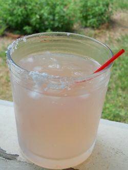 """Salty chihuahua"" [tequila, pink lemonade, rimmed with lime & salt] haha. sounds"
