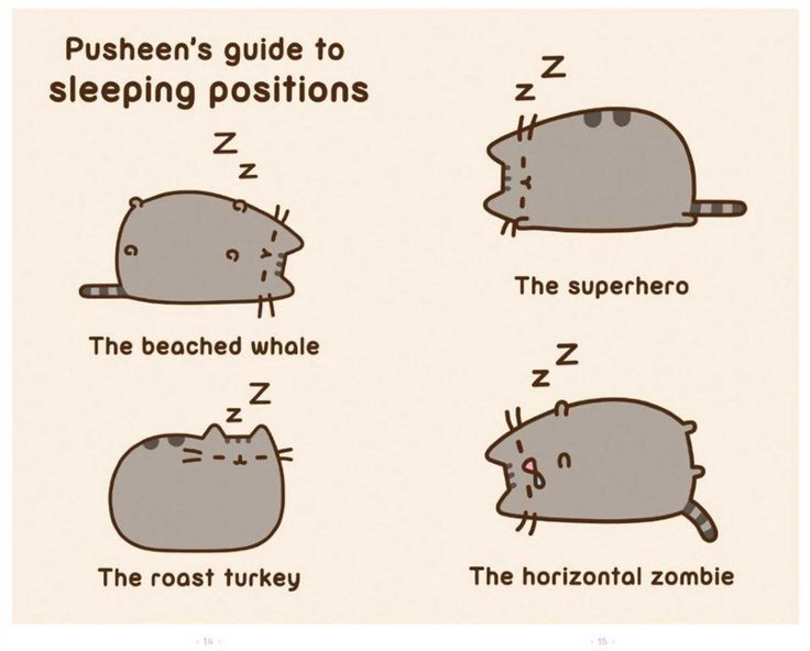 """Pusheen's guide to sleeping positions. Aahahhahah """"the horizontal zombie"""""""
