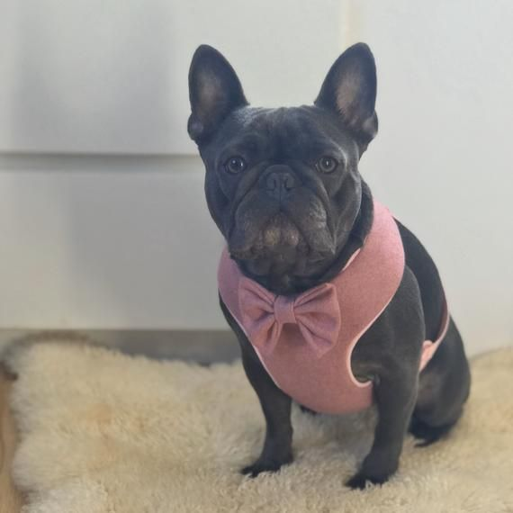 New Luxury Pink Dog Harness Tweed Dog Harness French