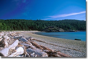 Sargeant Bay Provincial Park.   Set aside to preserve the splendid beaches, rocky headlands, lagoons and heavily forested uplands, this day-use only park is a lovely spot for walking, nature viewing and picnicking. Boaters will find safe anchorage here, and the surrounding waters are perfect for canoeing, kayaking, board sailing, scuba diving and fishing.