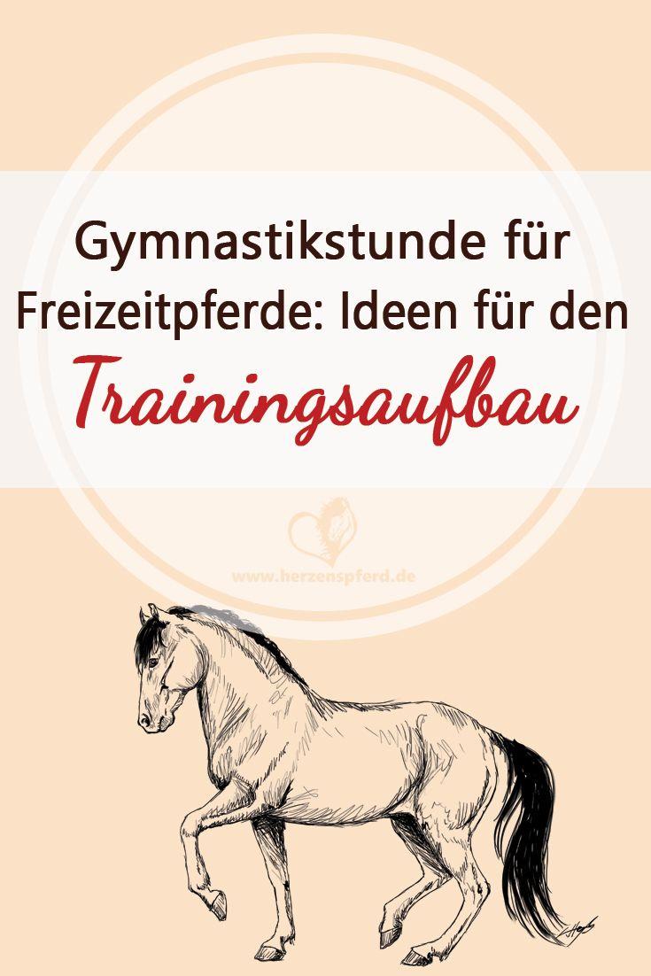 Gymnastikstunde für Freizeitpferde – Ideen für den Trainingsaufbau