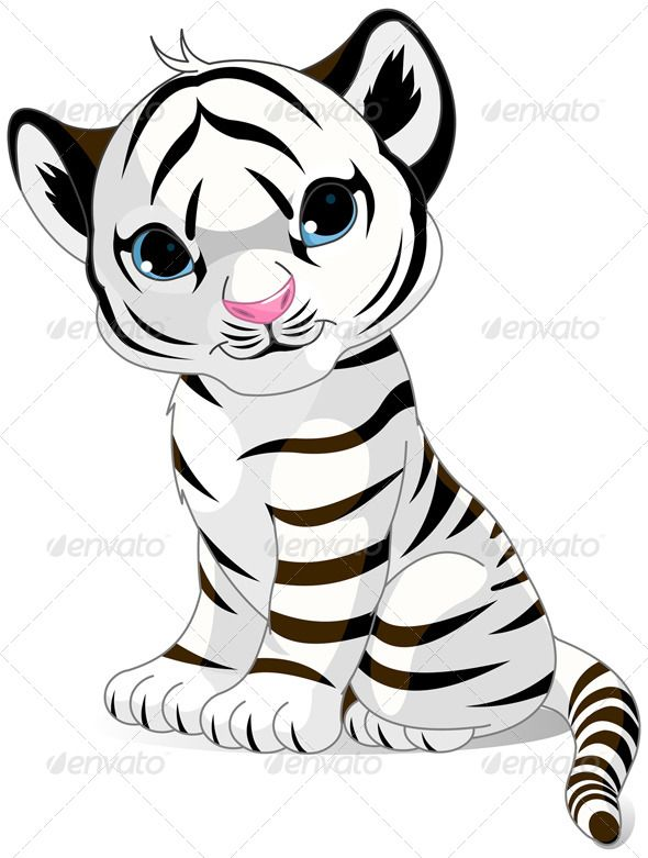 White Tiger - Animals Characters