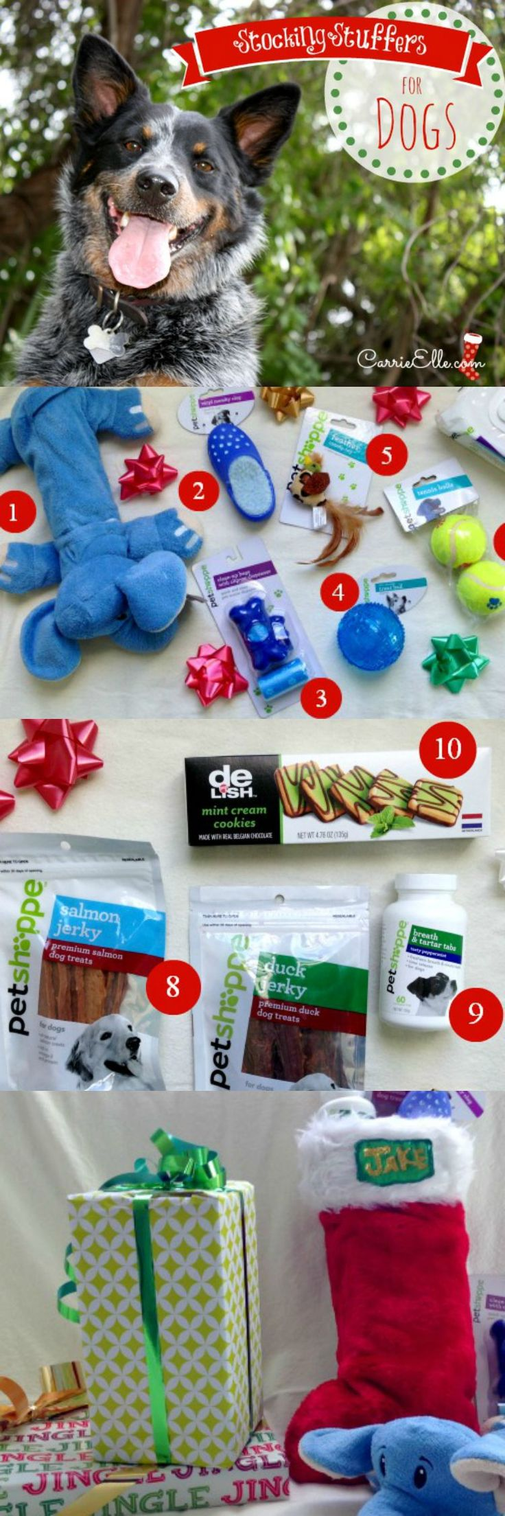 10 fun stocking stuffers for dogs!