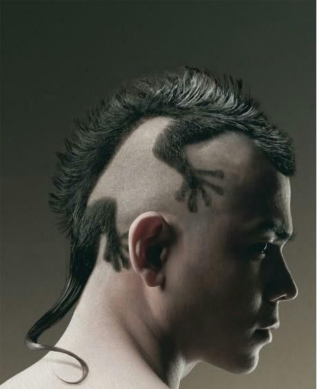 Lizard Mohawk...does it justify the rat tail...yes