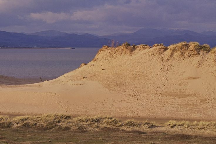 Threatened sand dunes set for a golden future thanks to £4.1m National Lottery funding http://www.cumbriacrack.com/wp-content/uploads/2017/11/Cumbria-sand-dunes-credit-Natural-England.jpg A third of England and Wales's threatened sand dunes have a brighter future thanks to a pioneering National Lottery funded conservation and restoration project, unveiled today    http://www.cumbriacrack.com/2017/11/09/threatened-sand-dunes-set-golden-future-thanks-4-1m-national-lottery-fu