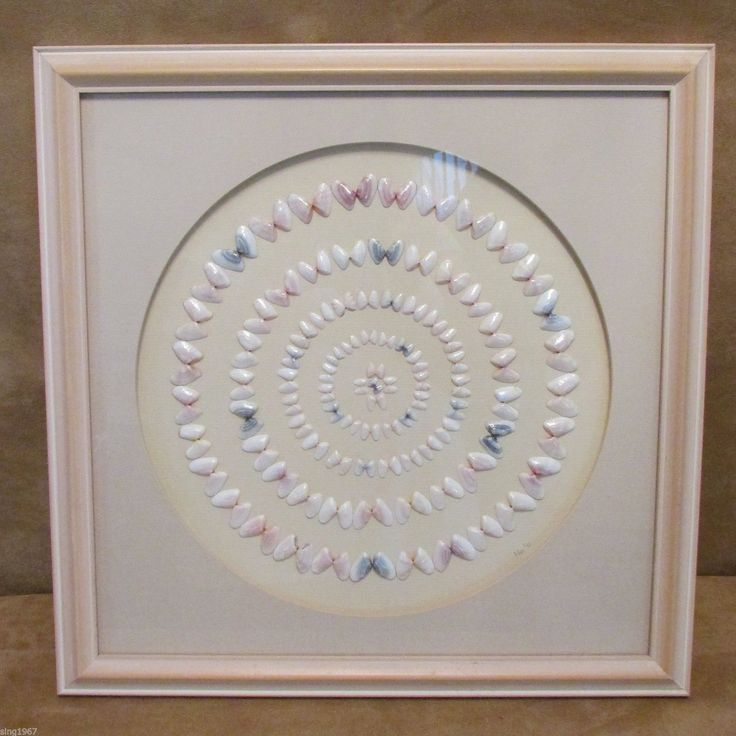 Coquina shell art picture circles 1991 collage handmade for Seashell art projects