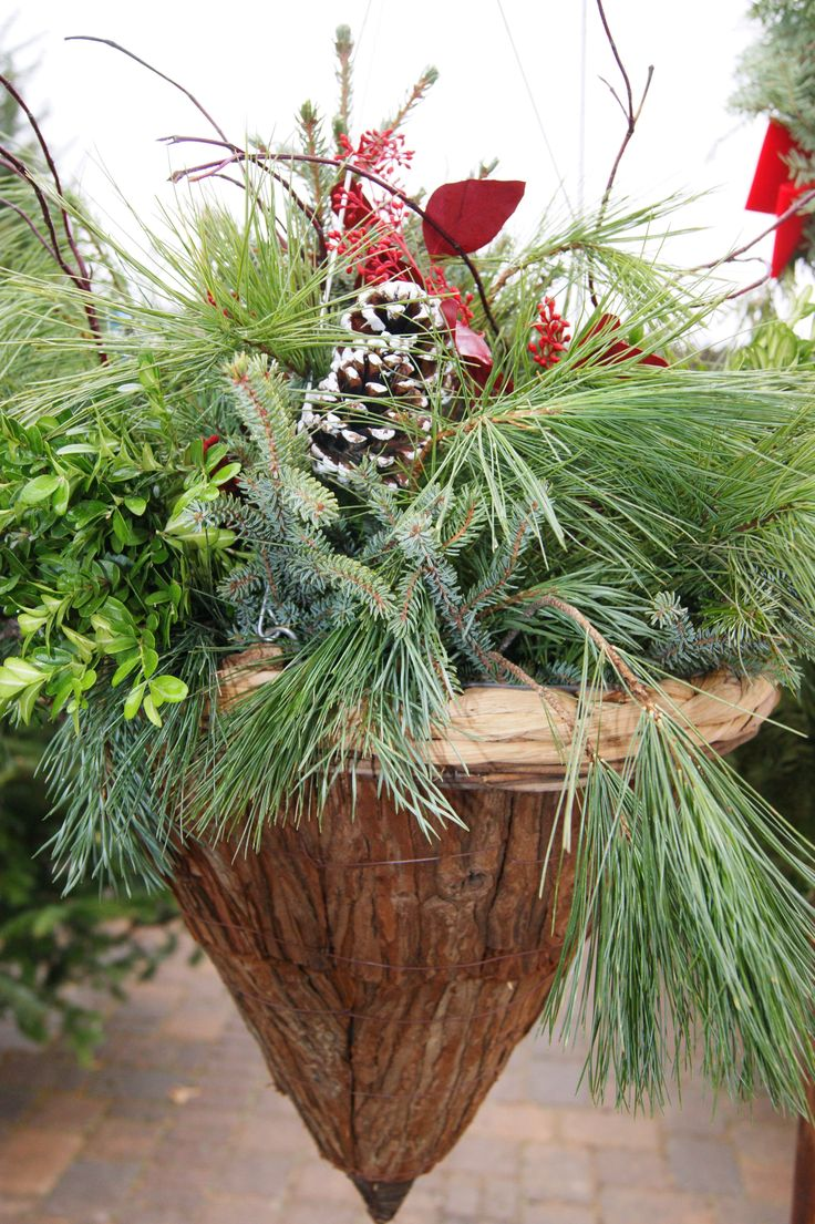 381 best Christmas garden planters images on Pinterest | Christmas ...