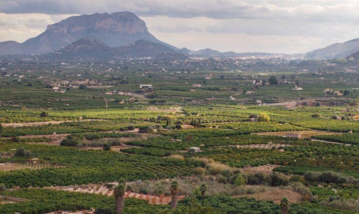 Huertas Vall de la Rectoría
