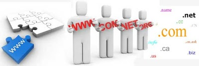 Options in Domain Registration
