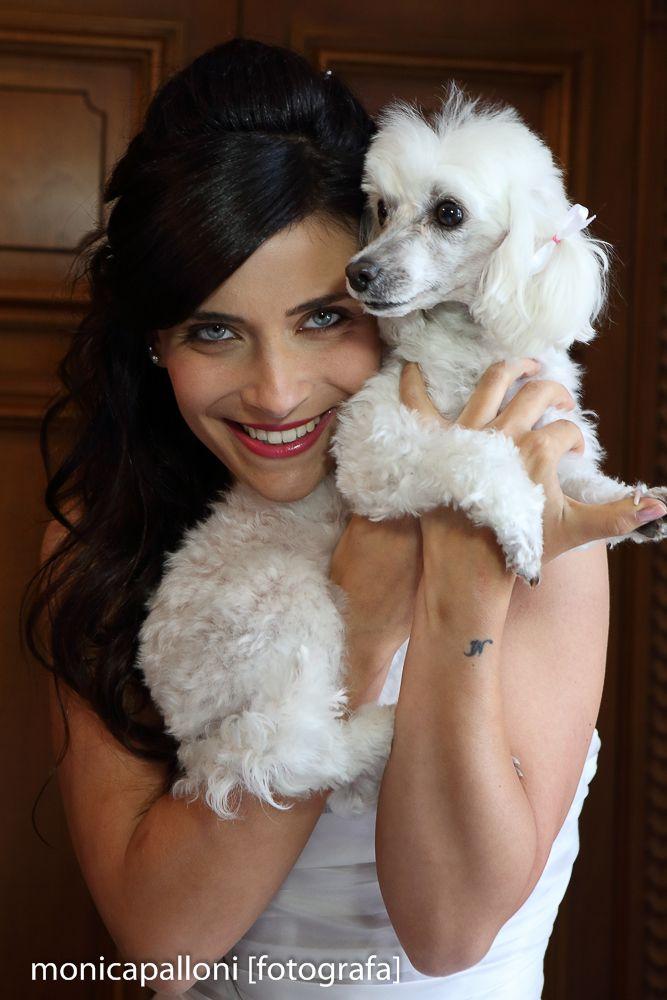 Foto Monica Palloni #dog #love #amore #smile #blueeyes #cane #white #bianco #sorriso #marriage #photo #bride #foto #sposa #matrimonio #wedding #brideanddog #fotografa #monicapallonifotografa #reportagedamatrimonio #fotografa