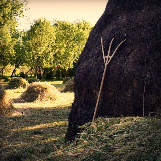 maramures haystack and wooden tools