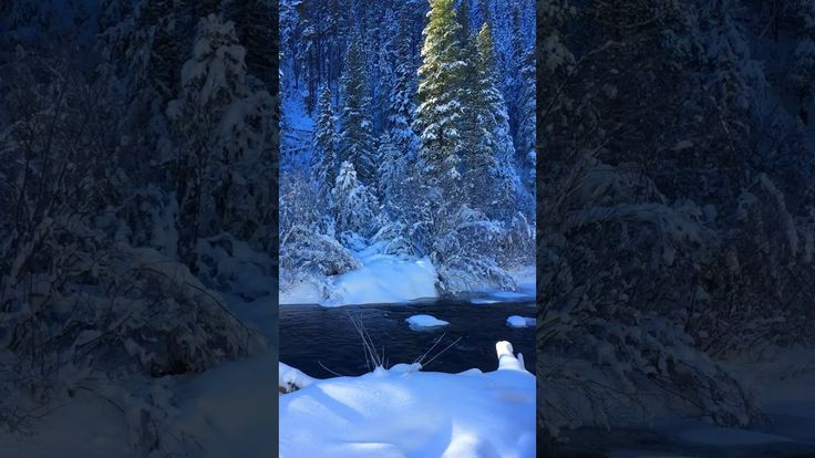 Hyalite Canyon is a favorite Winter playground for Bozemanites. The fact that the beautiful Hyalite Creek runs right through it makes it even more special. 'Explore' hiking in Montana on the Montana Treasures web site.