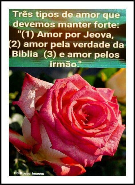 Pin Doa Maísa Domingos Em Frases Jeová Positivity E Facebook