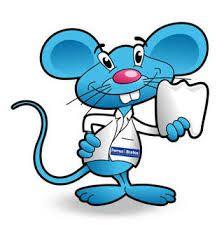 Mejores 76 imgenes de ratn Prez en Pinterest  Salud dental