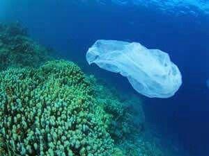 SUALTI Gazetesi | Okyanusların en büyük sorunu plastik kirliliği http://www.sualtigazetesi.com/?p=95804