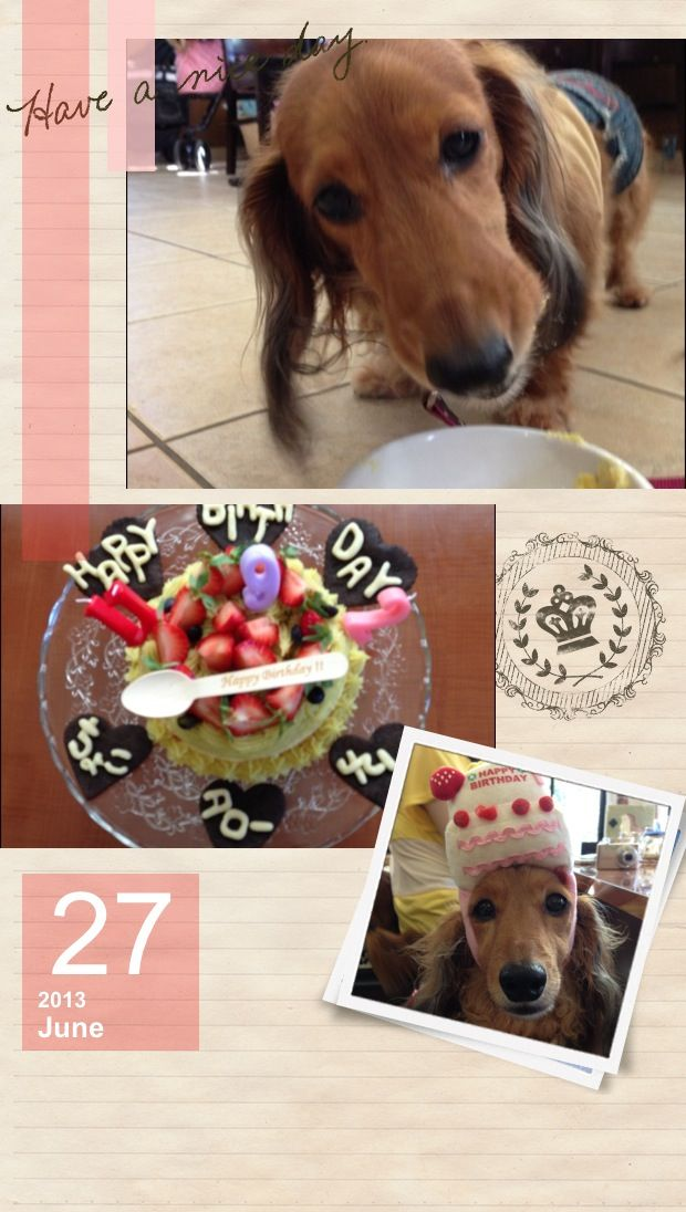 Happy Birthday Dear Choco♡