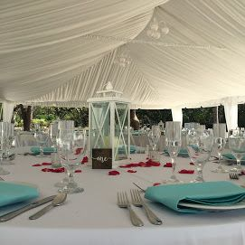 Ready for reception in seafoam blue and red rose pedals romantic detail.