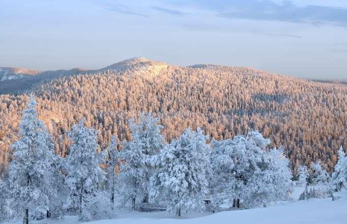 A Lapônia é uma região formada pela parte norte de quatro países: Noruega, Suécia, Finlândia e Rússi... - Shutterstock