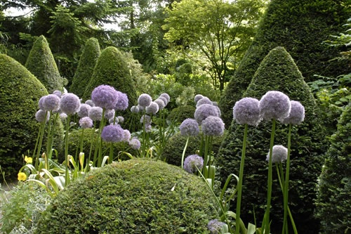 Les Jardins Agapanthe. More of my favorite garden. I love the design colors and care it took - real garden love.