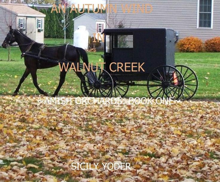 Furniture Stores Near Walnut Creek Ohio