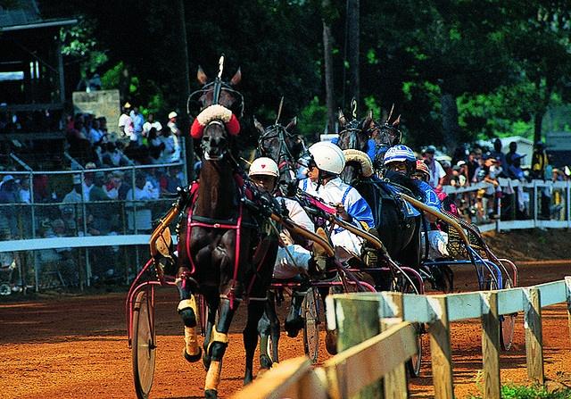 Neshoba County Fair Harness Races - Philadelphia, Mississippi by visitmississippi, via Flickr