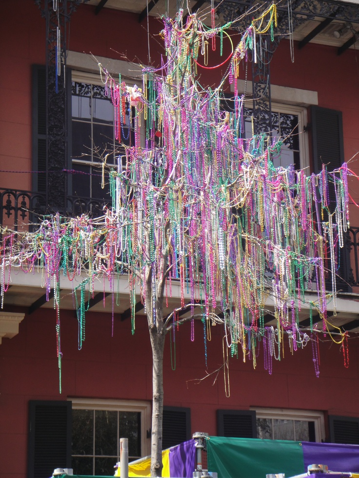 Mardi Gras Tree, considered exterior decor. Love to drive down Johnson street & see the beads in the trees!