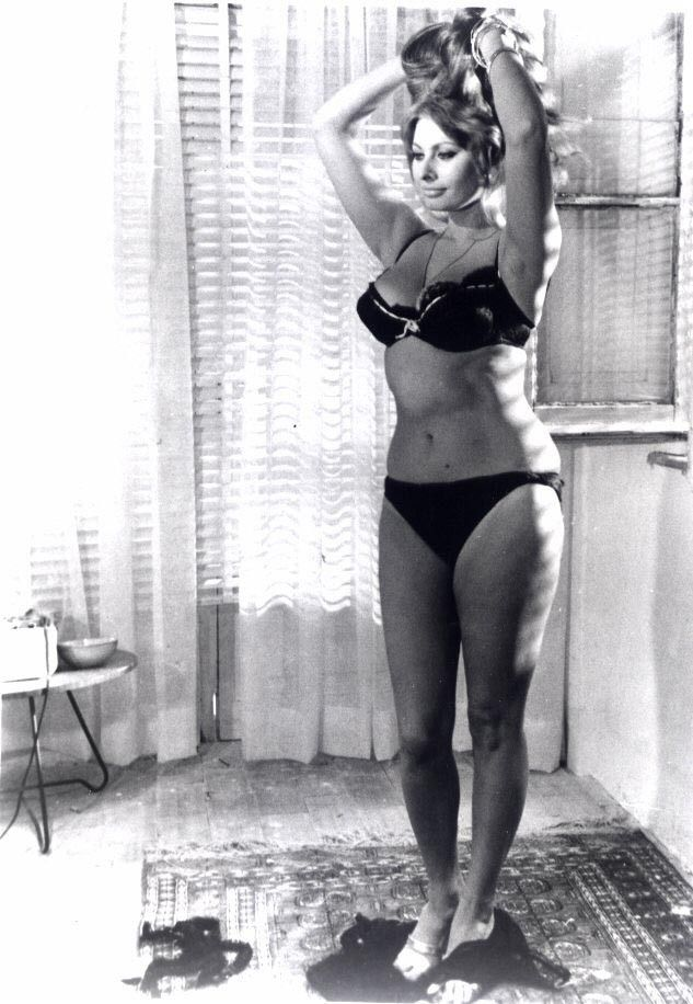 sophia loren - Bing Images                                                                                                                                                      More