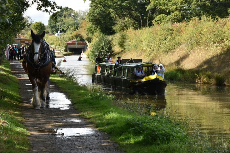 Horse drawn narrowboat on the Wey and Arun Canal