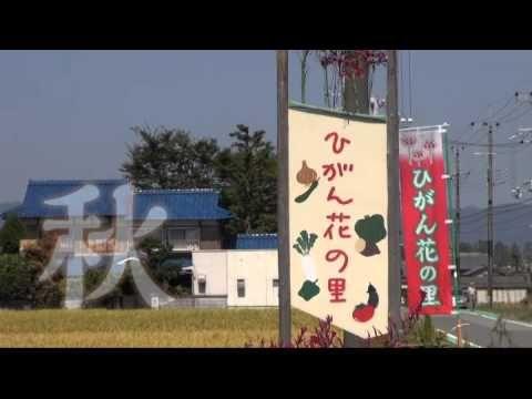 亀岡四季の花