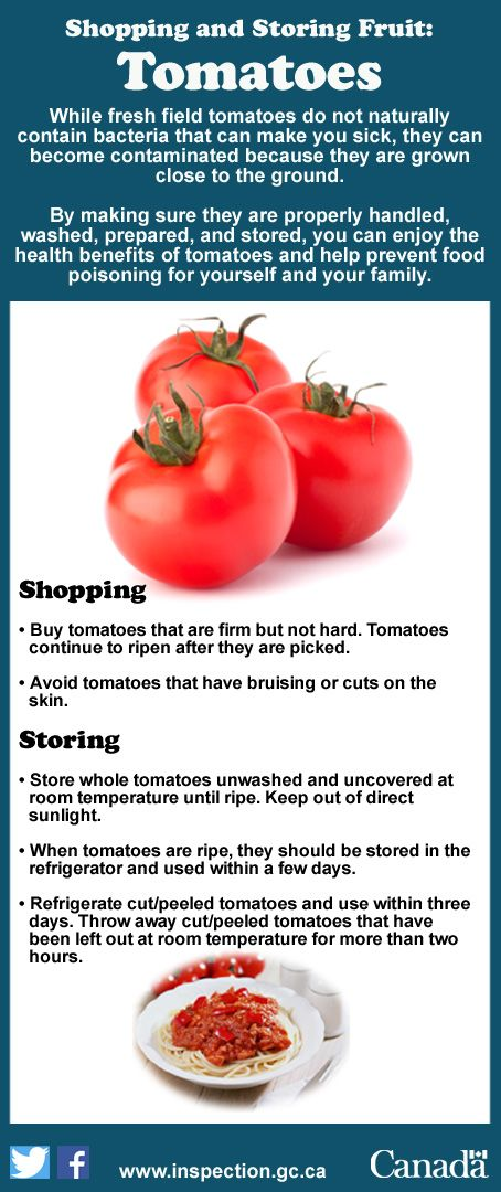 Shopping for the right tomatoes and storing them properly will help ensure your tomatoes stay fresh and nutritious.