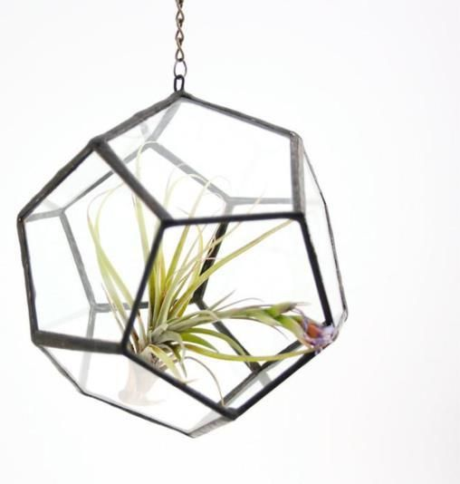 The much loved Dodecahedron Hanging Terrarium is back in stock <3