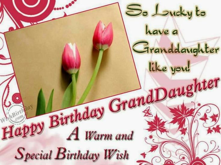 32 best granddaughter birthday images on pinterest happy birthday happy birthday granddaughter m4hsunfo