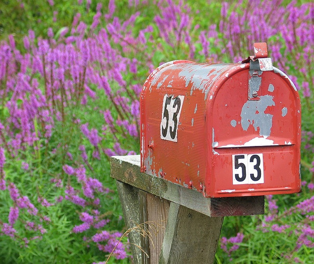 love this old mailbox.  this might be the best thing for me (cheap mailbox painted awesome) becuase stupid people can't seem to not crash into mine.