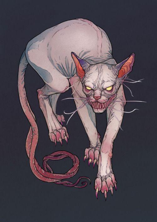 находится картинки монстров кошечек это