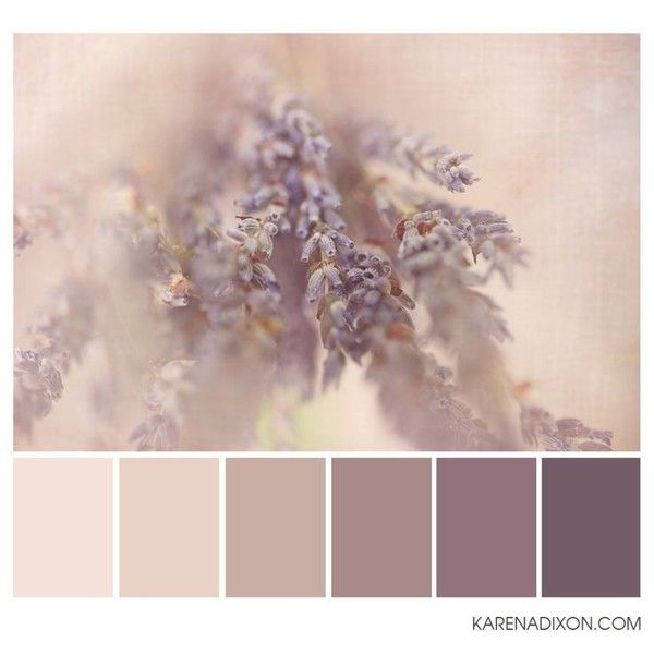 flora tones ❤ liked on Polyvore featuring home, home decor, color palettes, color pallettes, photo and floral home decor
